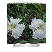 White Irises Shower Curtain