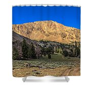 White Knob Mountain Peak Shower Curtain