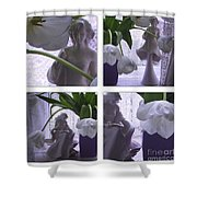 White Lace Picture Window Shower Curtain