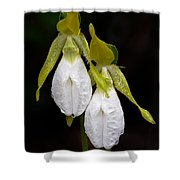 White Lady's Slipper Pair Shower Curtain