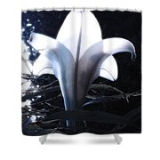 White Lily By Jan Marvin Shower Curtain