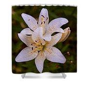 White Lily Starburst Shower Curtain