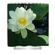 White Lotus I Shower Curtain