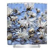 White Magnolia Magnificence Shower Curtain