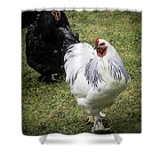 White Meat Or Dark Meat Shower Curtain