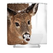 White On The Nose Shower Curtain