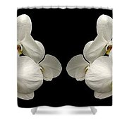 White Orchids Panorama Shower Curtain