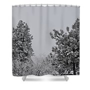 White Out Shower Curtain