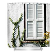 White Painted Shutter Shower Curtain