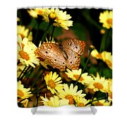 White Peacock Butterfly I I Shower Curtain