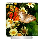 White Peacock Butterfly I V Shower Curtain