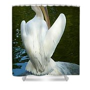 White Pelican Back Shower Curtain