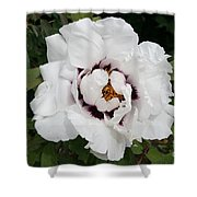 White Peony Shower Curtain
