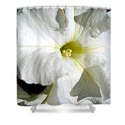 White Petunia Shower Curtain