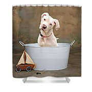 White Pitbull Puppy Portrait Shower Curtain by James BO  Insogna