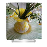 White Rays And Narcissus Shower Curtain