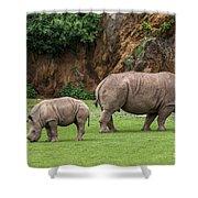 White Rhino 11 Shower Curtain