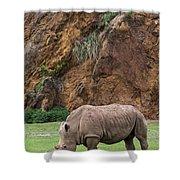 White Rhino 13 Shower Curtain