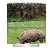 White Rhino 14 Shower Curtain