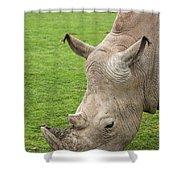 White Rhino 15 Shower Curtain