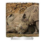 White Rhino 2 Shower Curtain