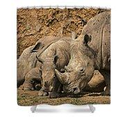 White Rhino 3 Shower Curtain