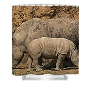 White Rhino 4 Shower Curtain