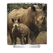 White Rhinoceros And Baby Lewa Kenya Shower Curtain