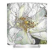 White Rose Abstract Shower Curtain