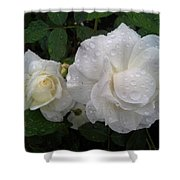 White Rose And Raindrops Shower Curtain