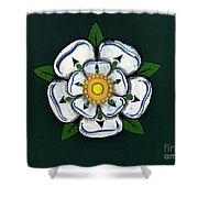 White Rose Of York Shower Curtain