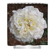 White Rose Square Shower Curtain