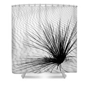 White Sands 07 Shower Curtain