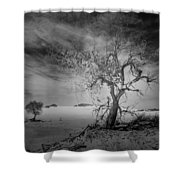 White Sands National Monument 1 Dark Mono Shower Curtain