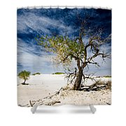 White Sands National Monument #1 Shower Curtain