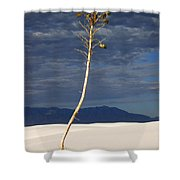White Sands National Monument 2 White Sands New Mexico Shower Curtain