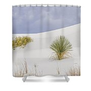 White Sands Tableau Shower Curtain
