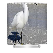 White Silky Feathers Shower Curtain