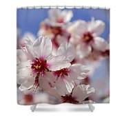 White Spring Almond Flowers Shower Curtain