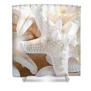 White Starfish 2 Shower Curtain