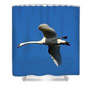 White Swan In Flight Shower Curtain