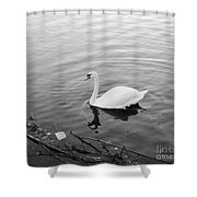 White Swan Solitary Shower Curtain