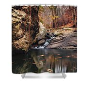 White Tail Shower Curtain