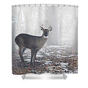 White Tailed Deer Buck In The Mist Shower Curtain