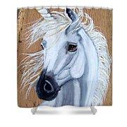 White Unicorn On Wood Shower Curtain
