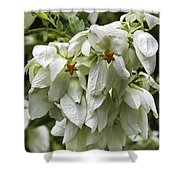 White Veil Of Tropical Flowers Shower Curtain