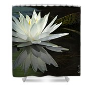 White Water Lily Reflections Shower Curtain