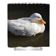 White Wings Shower Curtain