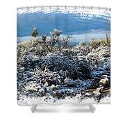 White Winter In The Desert Of Tucson Arizona Shower Curtain