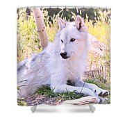 White Wolf Taking It Easy Shower Curtain